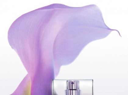Zapach Sheer Beauty Essence - Calvin Klein
