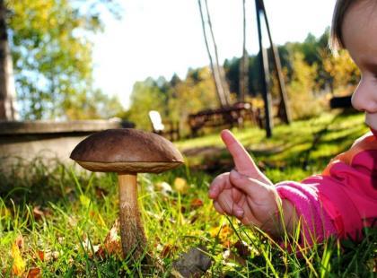 Zatrucie grzybami u dziecka - wywołaj wymioty!