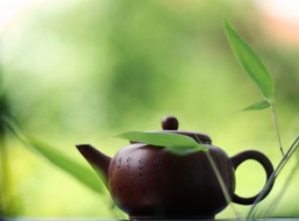 Zielona herbata - źródło zdrowia i urody