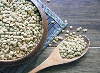 Zielona soczewica – zalety i wartości odżywcze
