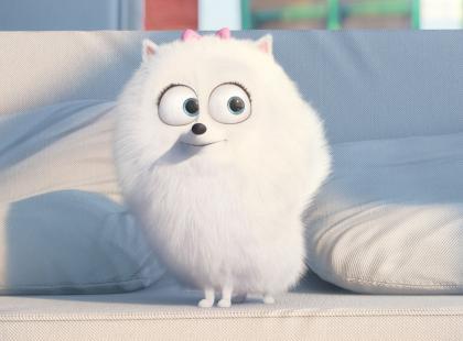 """Zwiastun obiecuje świetną zabawę! Zobacz trailer filmu """"Sekretne życie zwierzaków domowych"""""""
