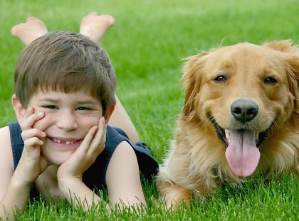 Zwierzęta domowe nie wywołują alergii u dzieci