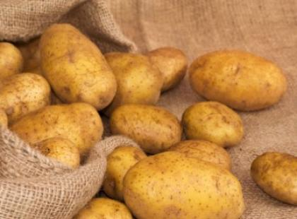 Zwyczajne ziemniaki