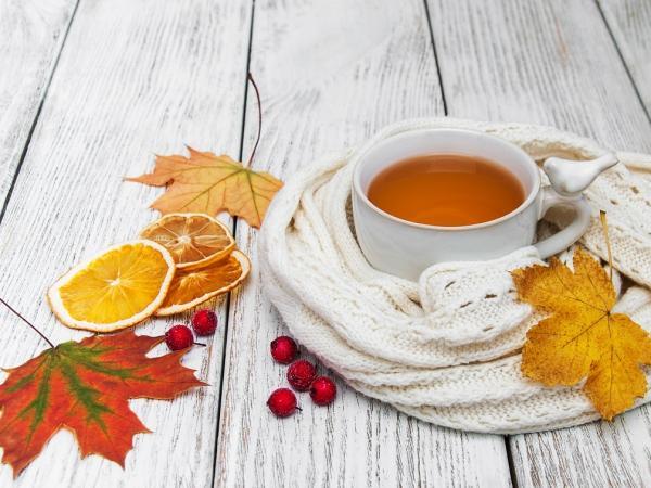 6 ziół, które warto mieć w jesiennej apteczce