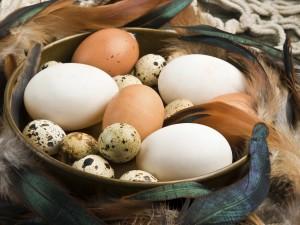 20 przepisów na dania z jajkami