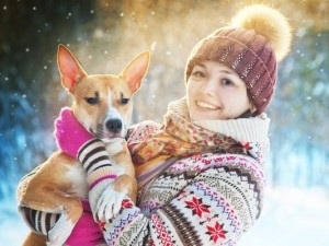 4 złote rady, jak uchronić psa przed stresem w sylwestra