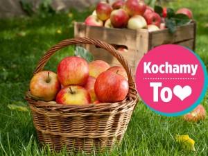 50 przepisów na pyszności z jabłkami