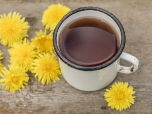 7 najpopularniejszych ziół o działaniu moczopędnym. Jak je stosować?