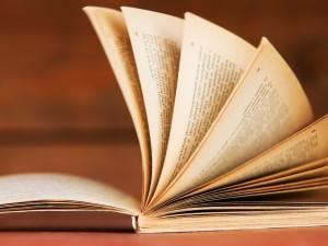 Adam Naruszewicz - biografia, Chudy literat