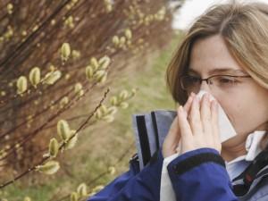 Alergia ewoluuje