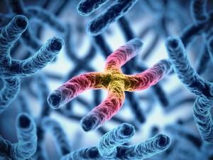 Badanie genetyczne może ustrzec przed cukrzycą