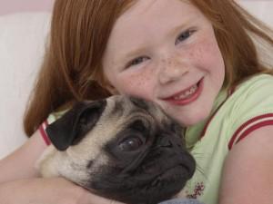 Chcę psa pod choinkę