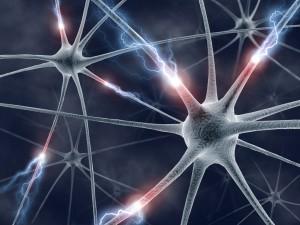 Chemia mózgu