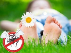 Co robić, gdy dziecko zostało ugryzione przez niebezpiecznego owada?