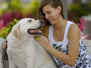 Co zrobić, by pies zaczął mnie słuchać?
