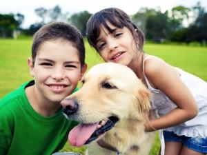 Czipowanie psów i kotów – potrzebne czy nie?