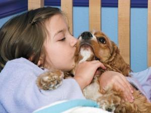 Czy wiesz jak nauczyć dziecko odpowiednio traktować zwierzę?