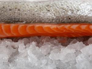 Czy wiesz jak przygotować surowego łososia z cytryną i koperkiem?