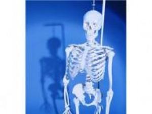 Czy wiesz jak zapobiegać osteoporozie?