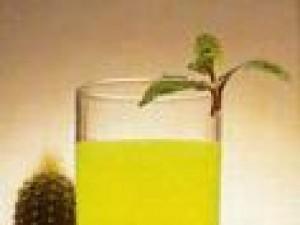 Czy wiesz jak zrobić drink Mockingbird?