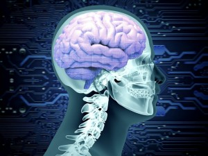 Dlaczego niektórzy z nas chorują na Alzheimera?