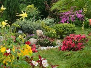 Efektowny skalniak w ogrodzie możesz zrobić naprawdę w prosty sposób. Nawet w małym ogródku!