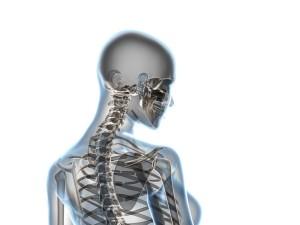 Jak dbać o kręgosłup?