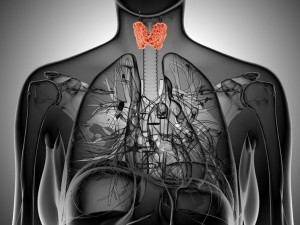 Jak hormony tarczycy wpływają na płodność?