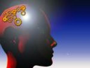 Jak odżywiać swój mózg