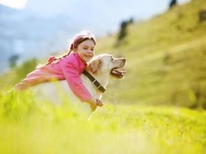 Jak przygotować psa na narodziny dziecka