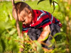 Jak rozmawiać z dzieckiem o ekologii