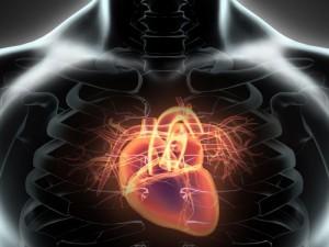 Jak wykrywa się wady strukturalne serca?