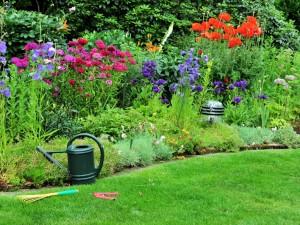 Jak założyć rabatę w ogrodzie?