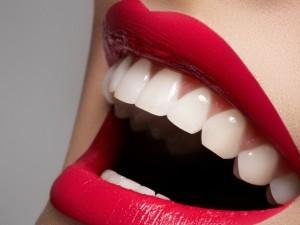 Jakie bakterie mieszkają w jamie ustnej?