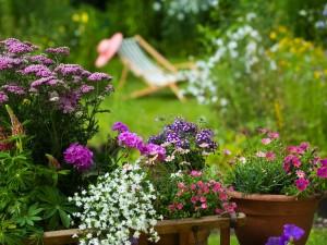 Kwiaty W Donicach W Ogrodzie Wybór Donic Wielkość Kompozycje