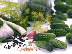Letni przysmak do obiadu - sprawdź nasze przepisy na ogórki małosolne