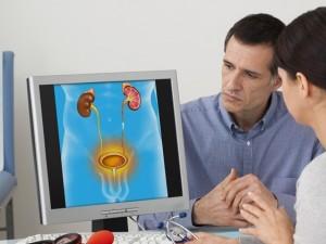 Nerki – jak rozpoznać ich choroby? Kompendium wiedzy