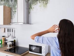 Nie lekceważ ciemnego, wilgotnego nalotu na ścianie, w narożu lub na fugach. To może być groźny grzyb