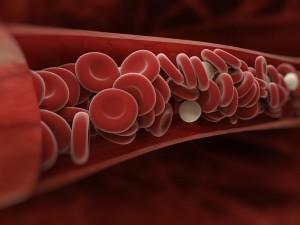 Nowotwór, zakażenie czy HIV? O czym świadczy nadmiar lub niedobór leukocytów we krwi?