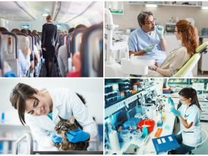 Oto 9 zawodów, które są najbardziej niebezpieczne dla ludzkiego zdrowia (chociaż pozornie wydają się niegroźne)