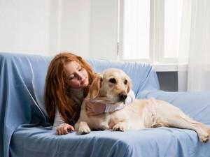 Pies warczy podczas karcenia
