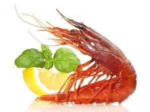 Południowoafrykańskie owoce morza