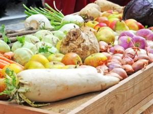 Skorzonera (salsefia) w kuchni