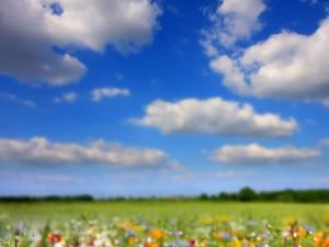 Wiosenne wróżby i rytuały