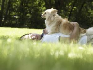 Wyprowadzanie psa