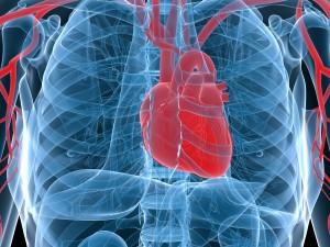 Zawał serca – vademecum