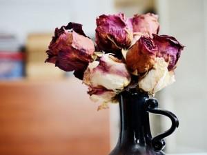 Zrób dekoracje z zasuszonych kwiatów!