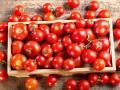 5 odsłon przetworów z pomidora: do czego pasują?