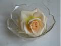 Kolorystyka dekoracji stołów weselnych
