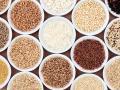 Komosa ryżowa, czyli święte zboże Inków